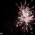 Artificii (4)