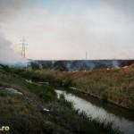 Incendiu de vegetatie in spate la mall (1)