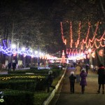 Lumini de Craciun in Bacau (1)