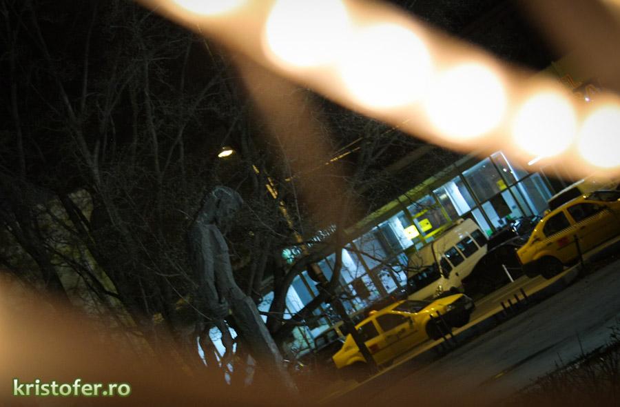 Lumini de Craciun in Bacau (14)