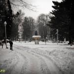 Parcul Cancicov (9)