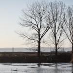 Aventuri urbane - lacul fara nume bacau (1)