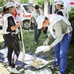 sanitarii priceputi bacau 2012 (1)