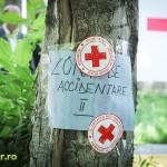 sanitarii priceputi bacau 2012 (2)