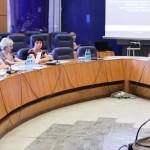 proiecte europene consiliul judetean bacau 2012 (2)