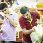 istanbul 2012 (18)