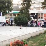 toamna bacoviana 2012 (1)