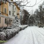 iarna bacau 2012 (9)