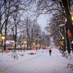 parcul cancicov iarna craciun 2012 13