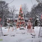 parcul cancicov iarna craciun 2012 6