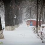 iarna in bacau ianuarie 2013-12