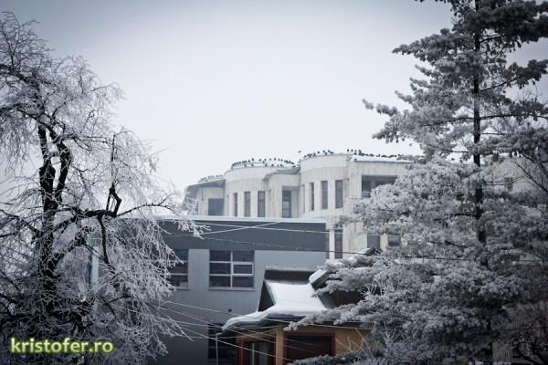 plimbare in Bacau 2013-1