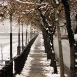 plimbare in cismigiu 2013 (2)