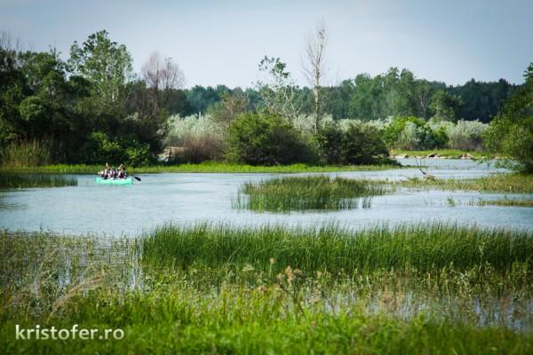 Lacul Bacau II (3)