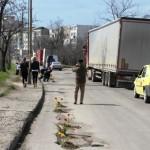 Tineri pentru Bacau - flori in asfalt Bacau (3)