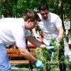 1 mai 2013 ecologizare plantare tsd bacau-7