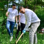1 mai 2013 ecologizare plantare tsd bacau-8