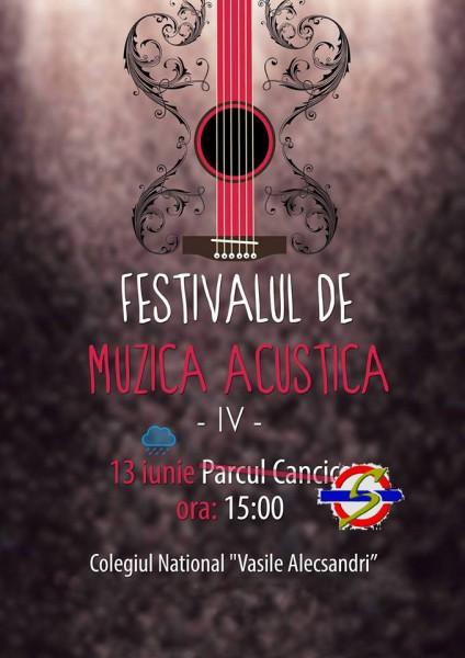 festivalul-de-muzica-acustica-2013-bacau
