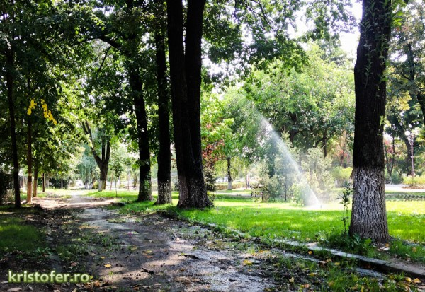 3 de bine - ploua pe aleile de parcul cancicov
