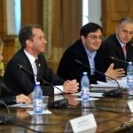 lansare legea voluntariatului 2013-1