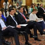 lansare legea voluntariatului 2013-2