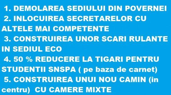 candidatura snspa 2013