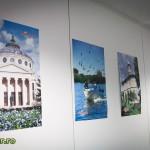 vizita consiliul uniunii europene bruxelles ferdinand 2013 (3)