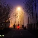 bucuresti ceata decembrie 2013 iarna (5)