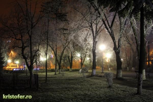 iarna parcul cancicov 2013-1