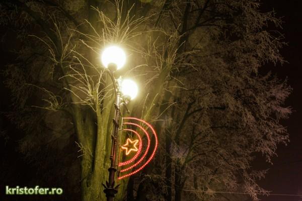 iarna parcul cancicov 2013-4