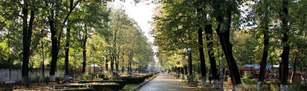 Parcul Cancicov toamna