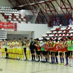 Cupa Mondiala Fifa 2014 la Bucuresti (9)