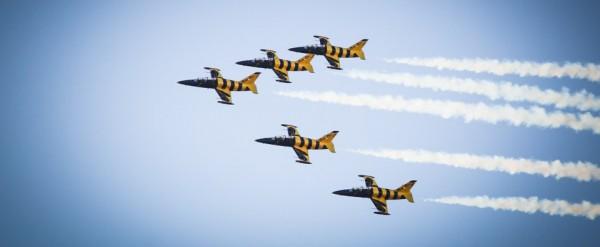 show aviatic bias 2014 (12)