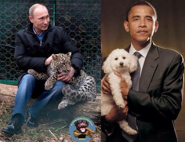 vladimir putin leopard obama bichon rogozin
