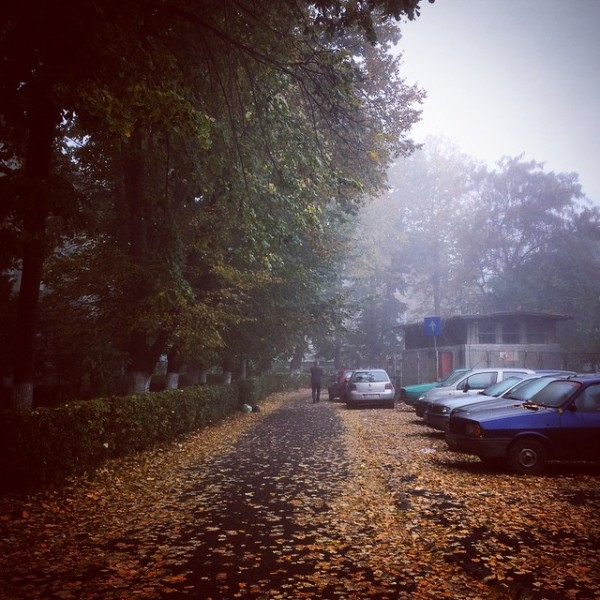 bacau toamna 2014 ceata instagram