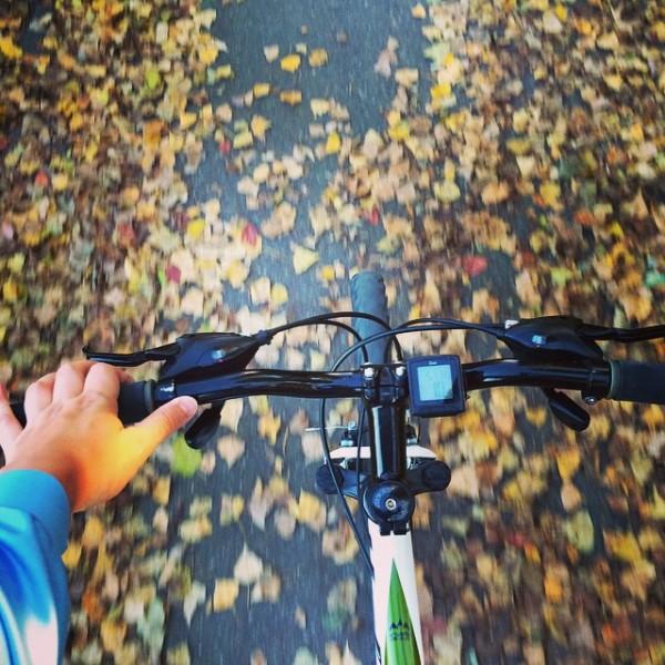 bicicleta univega ht 300 toamna bacau instagram
