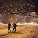 zapada iarna bacau 2014-1