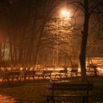 parcul cancicov ceata iarna-7