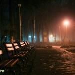 parcul cancicov ceata iarna-8