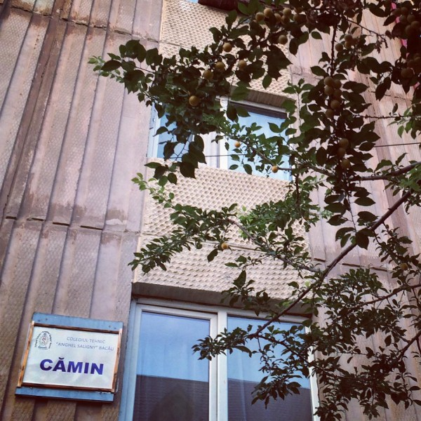 4 camin anghel saligny