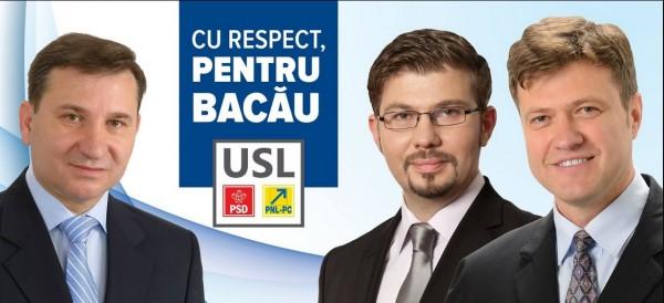 afis-electoral-Stavarache-Necula-Luchian