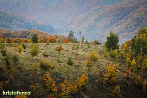 slanic moldova 2015 toamna-3