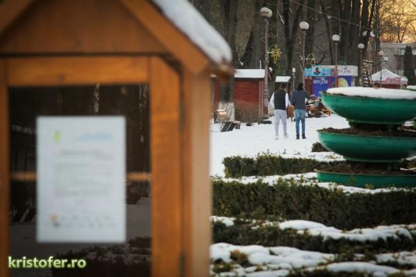 parcul cancicov iarna bacau-1