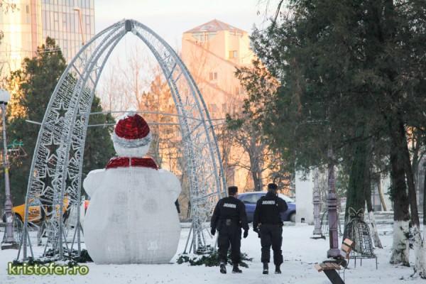 parcul cancicov iarna bacau-11