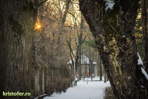 parcul cancicov iarna bacau-2