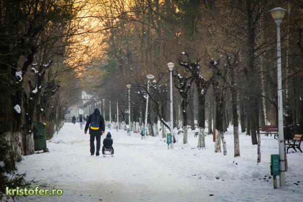 parcul cancicov iarna bacau-4