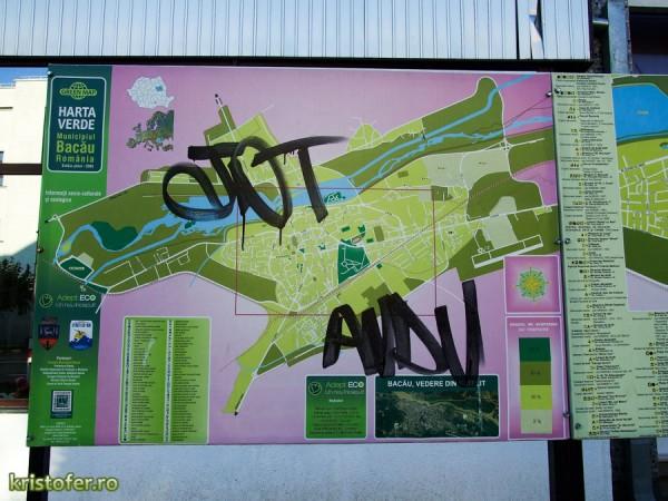 7 harta verde bacau