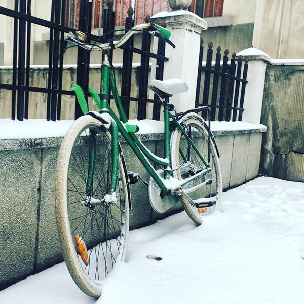 7 bicicleta universitatea titulescu