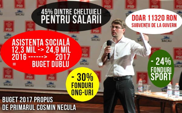 buget 2017 propus necula-small