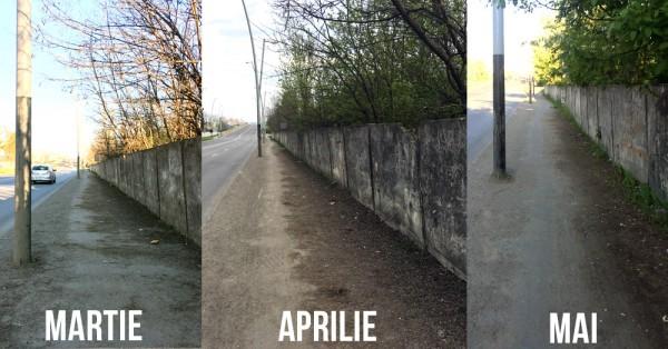 mizerie calea moinesti bacau martie aprilie mai 2017